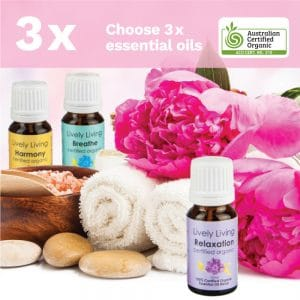3 Pack – Choose Any 3!